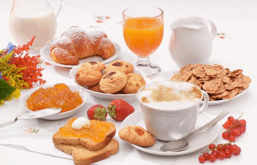 colazione hotel l'oasi castiglione terme